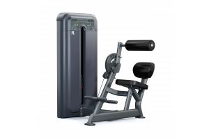 Pulse Fitness 595H Abdominal Lower Back Extension